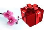 Сувениры и подарки - Каталог
