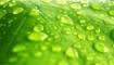 Статья. Как влажность воздуха влияет на организм человека, на кожу