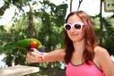 Кормление попугаев в сафари-парке Страна Львов, Майами, Флорида