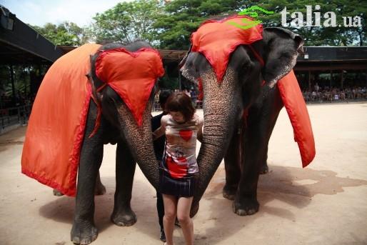 Паттайя, Таиланд.