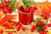 Рецепт. Вино из шиповника (домашнее)