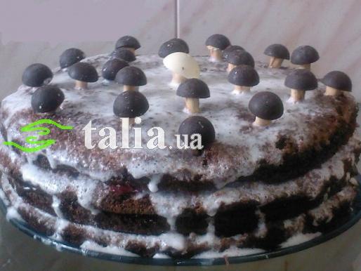 Рецепт. Торт ''Трухлявый пень'' с фруктами